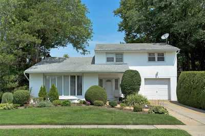 Plainview Single Family Home For Sale: 29 Robin Ln