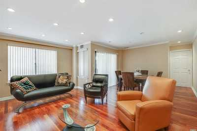 Lawrence Condo/Townhouse For Sale: 376 Central Ave #3L