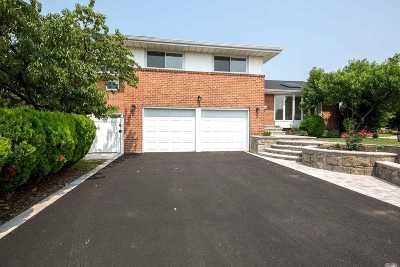 Syosset Single Family Home For Sale: 19 Cambria Rd