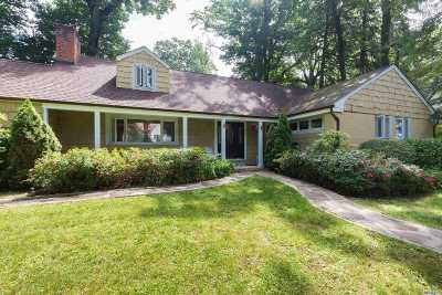 Great Neck Single Family Home For Sale: 202 Myrtle Dr