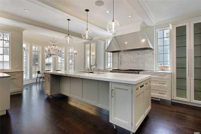 Wantagh Single Family Home For Sale: 1796a Merikoke Ave