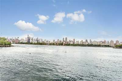 Long Island City Co-op For Sale: 14-23 31 Ave #1