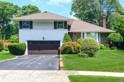 Westbury NY Single Family Home For Sale: $545,000