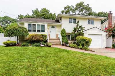 Bellmore Single Family Home For Sale: 2503 Florin Ct