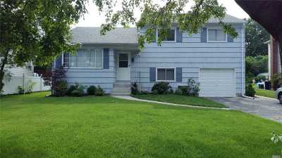 E. Williston Single Family Home For Sale: 71 Bengeyfield Dr