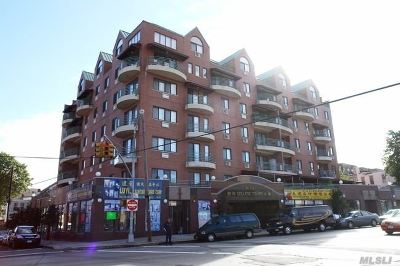 Flushing Condo/Townhouse For Sale: 41-05 College Point Blvd #6