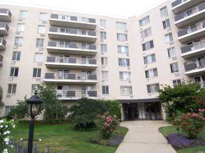 Carle Place, Westbury Condo/Townhouse For Sale: 135 Post Ave #1Q