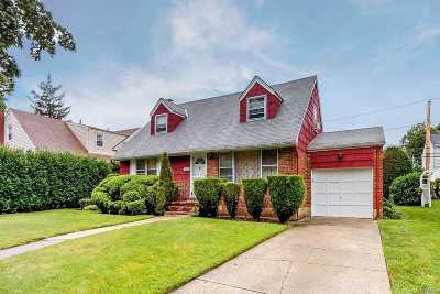 Garden City Single Family Home For Sale: 115 Meadow St
