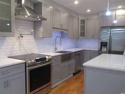 Plainview Single Family Home For Sale: 36 Virginia Ave