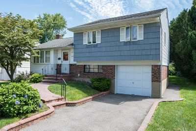 Syosset Single Family Home For Sale: 293 Southwood Cir