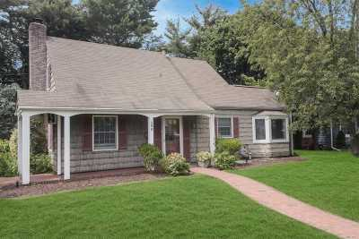Carle Place, Westbury Single Family Home For Sale: 288 Jamaica Blvd