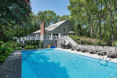 East Hampton Single Family Home For Sale: 9 Historical Ct