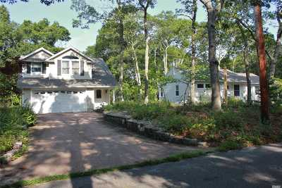 Hampton Bays Single Family Home For Sale: 7 Locust St