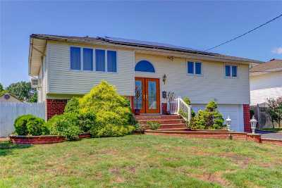 Seaford Single Family Home For Sale: 2648 S Irene Ln