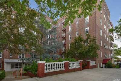 Rego Park Condo/Townhouse For Sale: 63-60 102nd St #B3