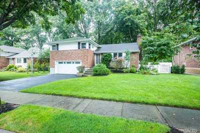 East Meadow Single Family Home For Sale: 1369 Richmond Ct