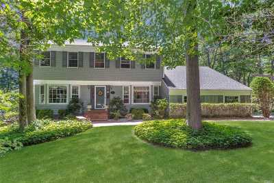 Port Jefferson Single Family Home For Sale: 2 Chips Ct