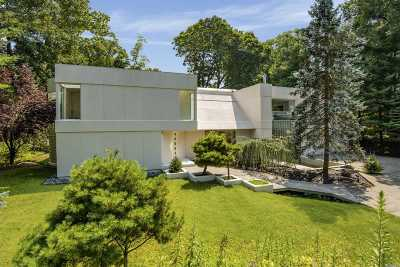 Roslyn Single Family Home For Sale: 86 The Serpentine