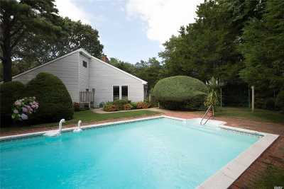 Westhampton Single Family Home For Sale: 6 Wintergreen Lane