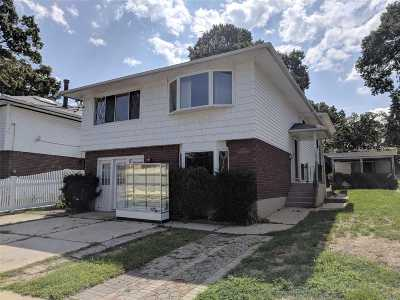Floral Park Single Family Home For Sale: 397 Marguerite Ave