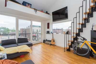 Astoria Condo/Townhouse For Sale: 11-42 31st Ave #4A