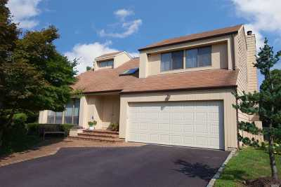Syosset Single Family Home For Sale: 5 Princeton Dr