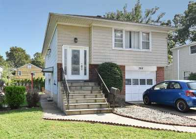 East Meadow Single Family Home For Sale: 368 Elmore Ave