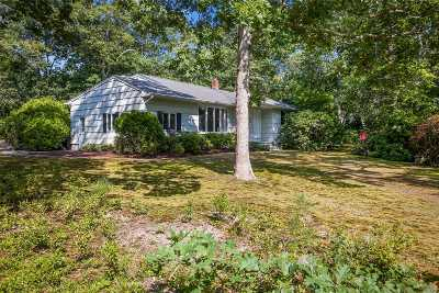 Westhampton Bch Single Family Home For Sale: 24 Hampton St