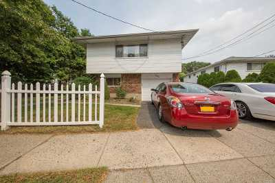 Bethpage Single Family Home For Sale: 782 Stewart Ave