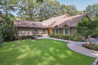 Smithtown Single Family Home For Sale: 6 Wandering Way