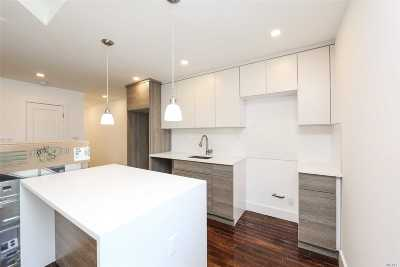 Brooklyn Multi Family Home For Sale: 43 Crystal St