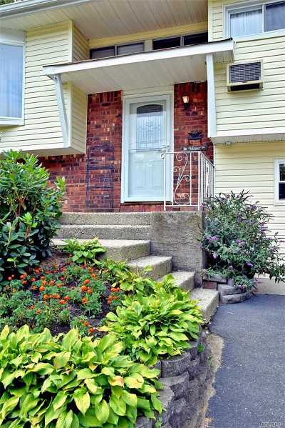 Centereach Single Family Home For Sale: 125 Lenore Ln