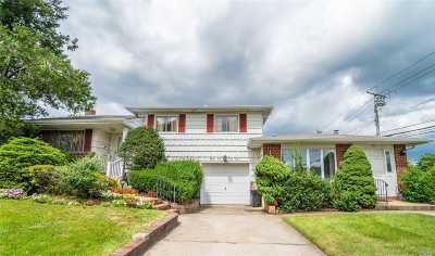 Hicksville Single Family Home For Sale: 97 Froehlich Farm Rd