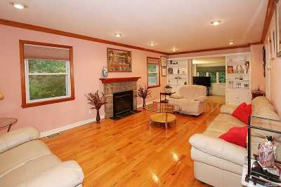 Roslyn Single Family Home For Sale: 44 South Ct