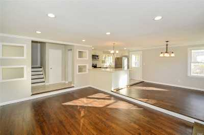 Hicksville Single Family Home For Sale: 30 Jay St