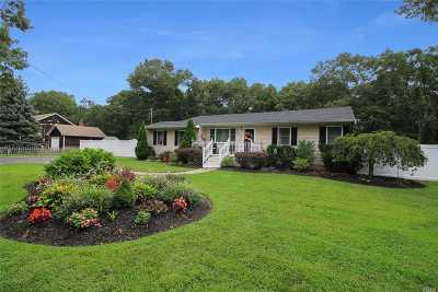 Medford Single Family Home For Sale: 203 Pennsylvania Ave Ave