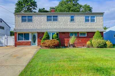 Hicksville Single Family Home For Sale: 19 Friendly Rd