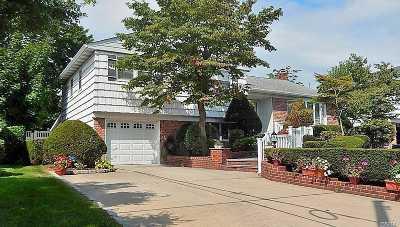 Plainview Single Family Home For Sale: 6 Leah Ln
