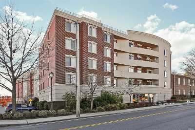 Westbury Condo/Townhouse For Sale: 242 Maple Ave #506