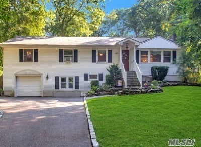 Smithtown Single Family Home For Sale: 9 Ingelore Ct