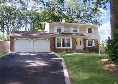 Farmingville Single Family Home For Sale: 76 Avenue D
