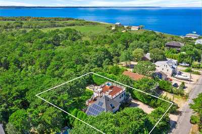 Amagansett Single Family Home For Sale: 115 Mulford Ln