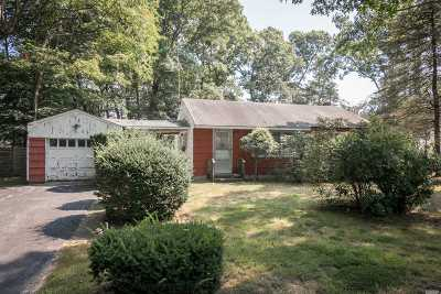 Lake Grove Single Family Home For Sale: 37 Dietz Ave