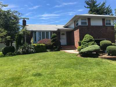 Westbury Single Family Home For Sale: 21 Glen Rd