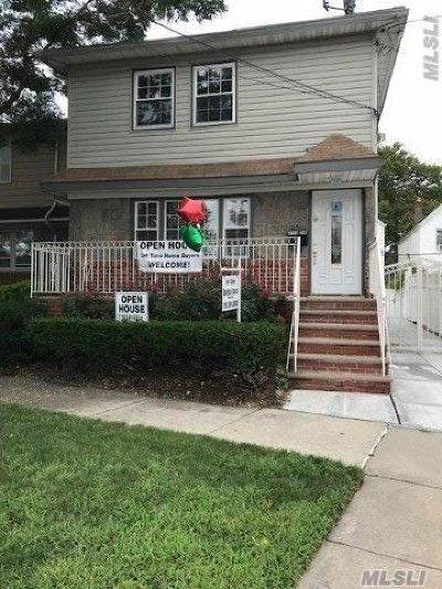 Ozone Park Single Family Home For Sale: 133-24 Hawtree Creek Rd