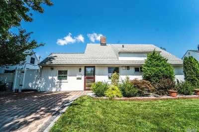 Hicksville Single Family Home For Sale: 164 Brittle Ln