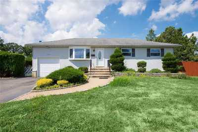 Deer Park Single Family Home For Sale: 379 Lake Ave