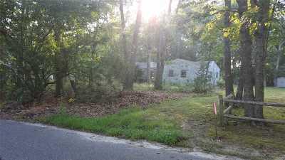 Remsenburg Single Family Home For Sale: 29 Matthews Dr