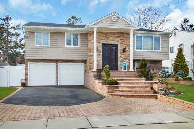 Bellmore Single Family Home For Sale: 2846 Len Dr