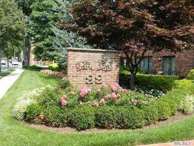 Rockville Centre Condo/Townhouse For Sale: 99 S Park Ave